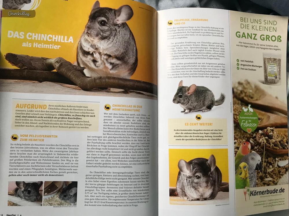 Ein wundervoller Artikel von mir zum Thema in der Ausgabe 6/19 der Haustier Umschau