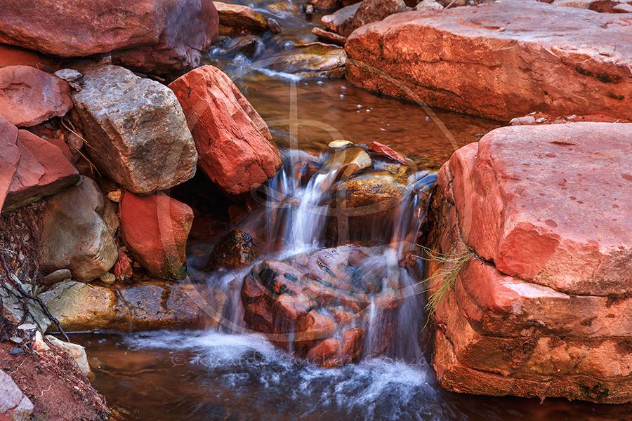 Taylor's Creek