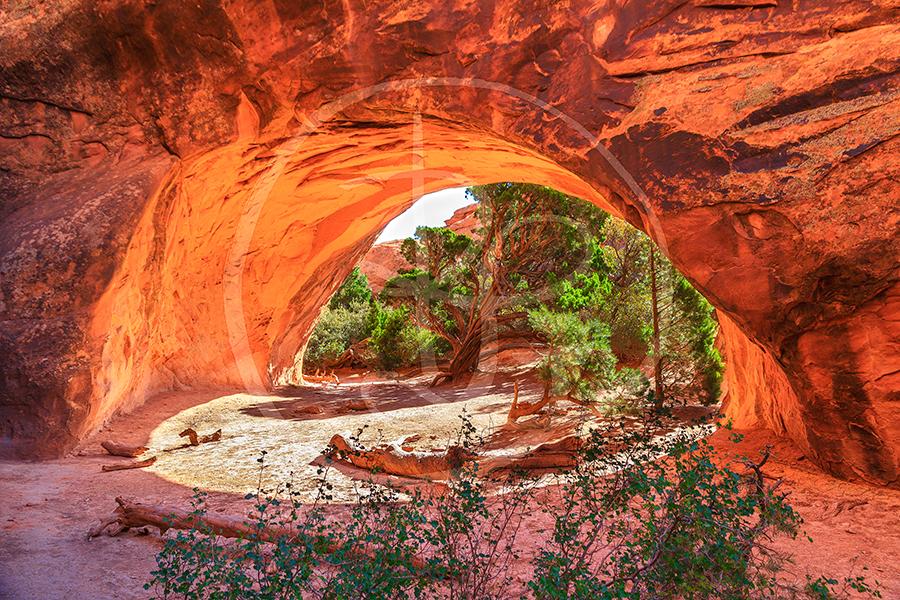 Navajo Arch.