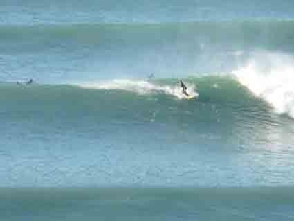 Le surf en toute saison