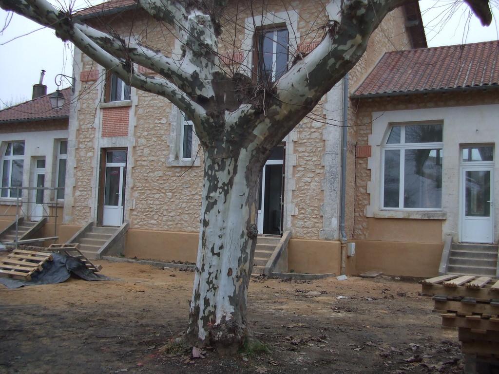 31/01/2011 : Façade arrière des 2 logements