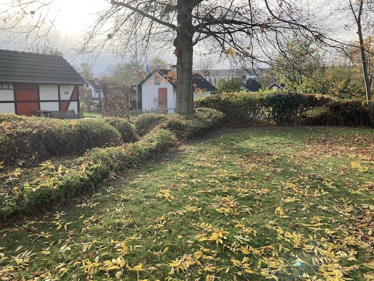 - Hecke rechts v. Königsallee -