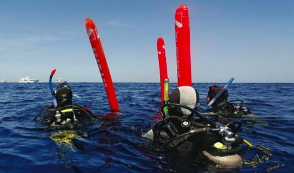 Divers on the surface