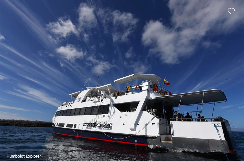 Galapagos Shark Diving - Ship Galapagos Dive Liveaboard