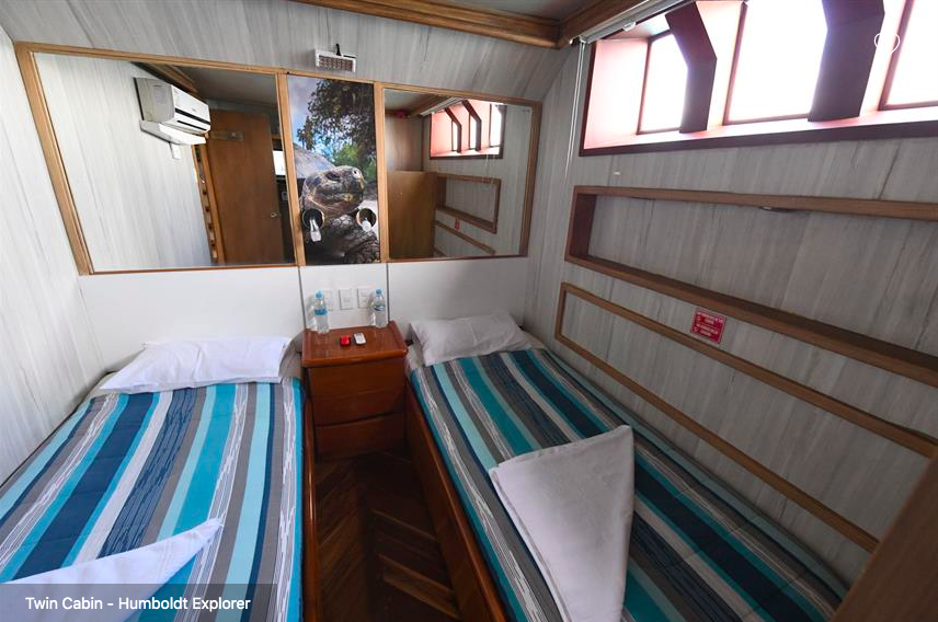 Galapagos Shark Diving - twin bed cabin on the lower deck of the ship Galapagos Dive Liveaboard