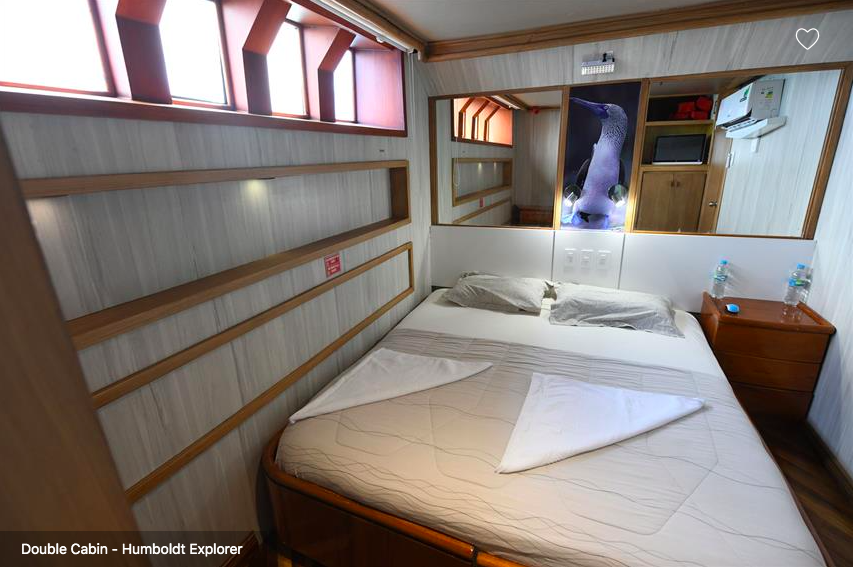 Galapagos Shark Diving - double bed cabin on the lower deck of the ship Galapagos Dive Liveaboard