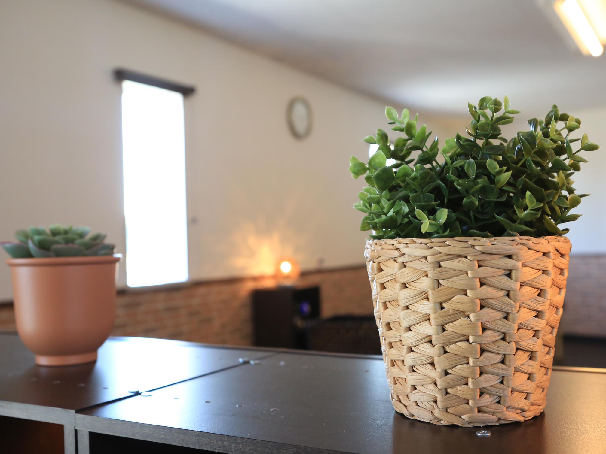 植物も多く設置し、安らげるよう工夫しています。