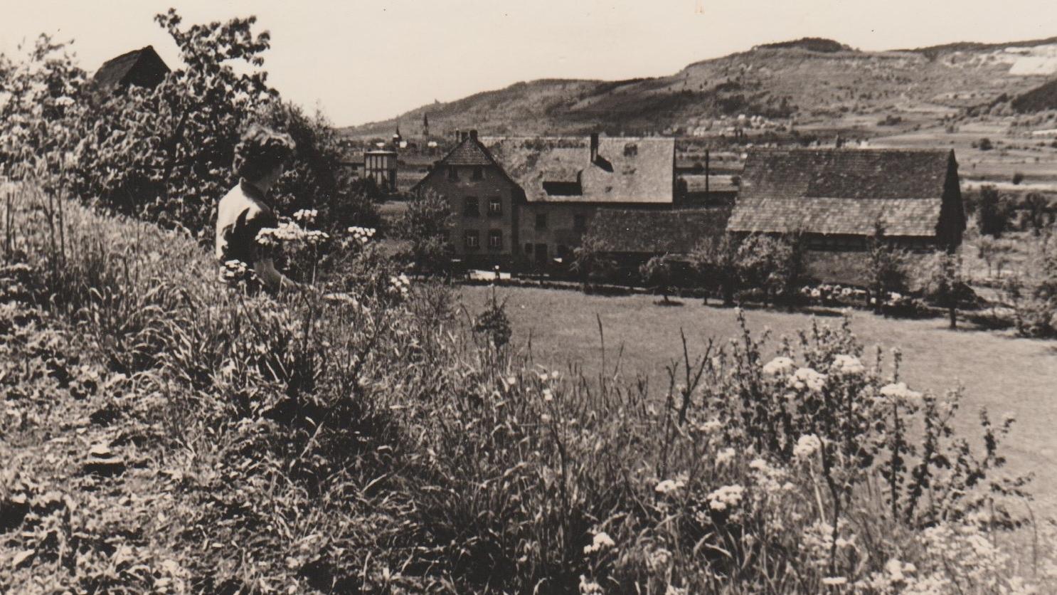 Der Landgasthof Bieger in Rothenbühl 1973.