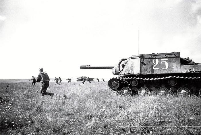 L'opération Bagration révèle la véritable fonction des Zveroboy, l'appui de l'infanterie