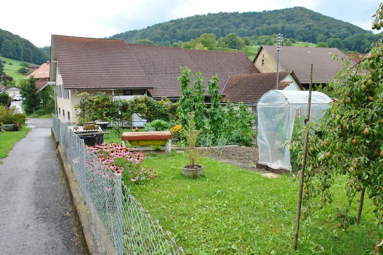 Land-Idylle: Grosser Gemüsegarten