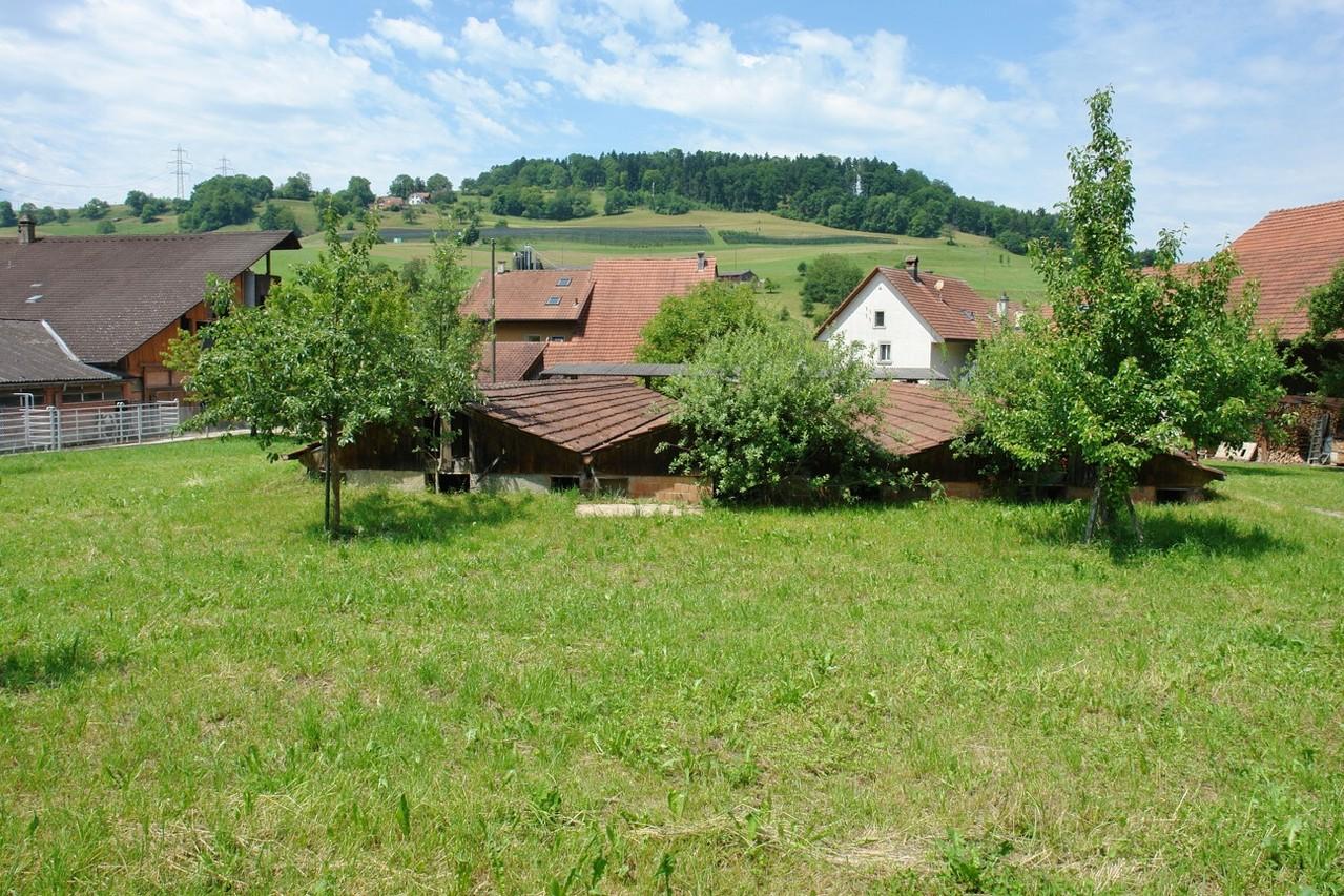 Traumhaft: Ansicht von Osten. Das zum Verkauf stehende Grundstück erstreckt sich über die gesamte Bildbreite.
