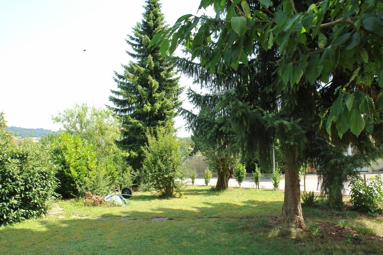 Impression aus dem Garten mit altem Baumbestand (südlicher Bereich)
