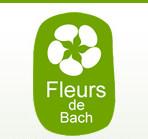 Tom Vermeersch, psychologue certifié et expert en Fleurs de Bach.