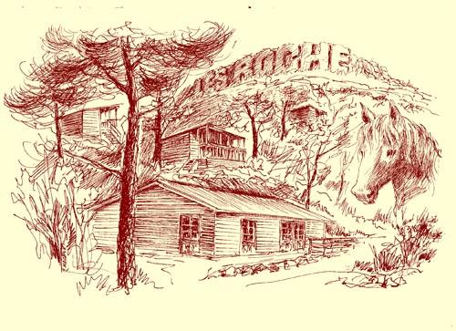 Grand gîte Les Roche Forcalquier 04300 Alpes de Haute Provence