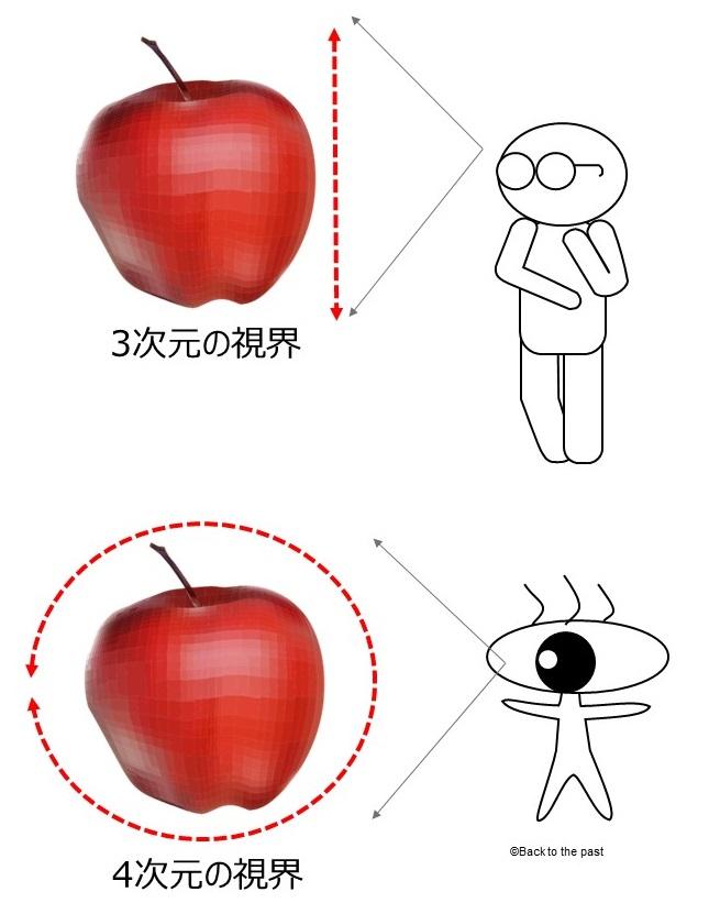 3次元と4次元の視界