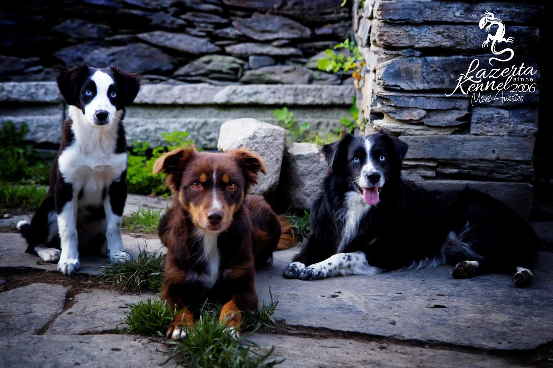 Chromi mit ihren Eltern Eos & Eze (Foto: Julia Rehfeld)