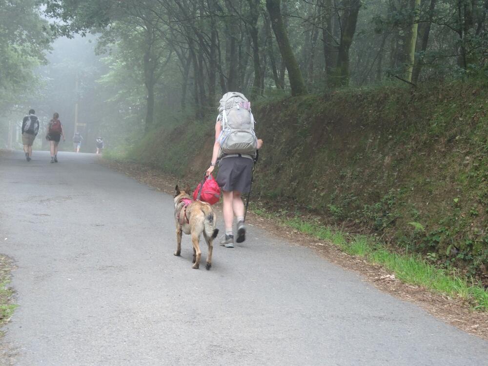 Eine Pilgerin mit dem Hund. Die Hunde und Pferde vertragen schlecht denn Jakobsweg und haben auf Dauer ein Problem jeden Tag über 30 km zu laufen . Nur der Mensch verträgt das reltiv gut.
