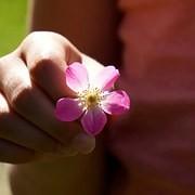 le massage accorde aux personnes âgées un moment de bien-être