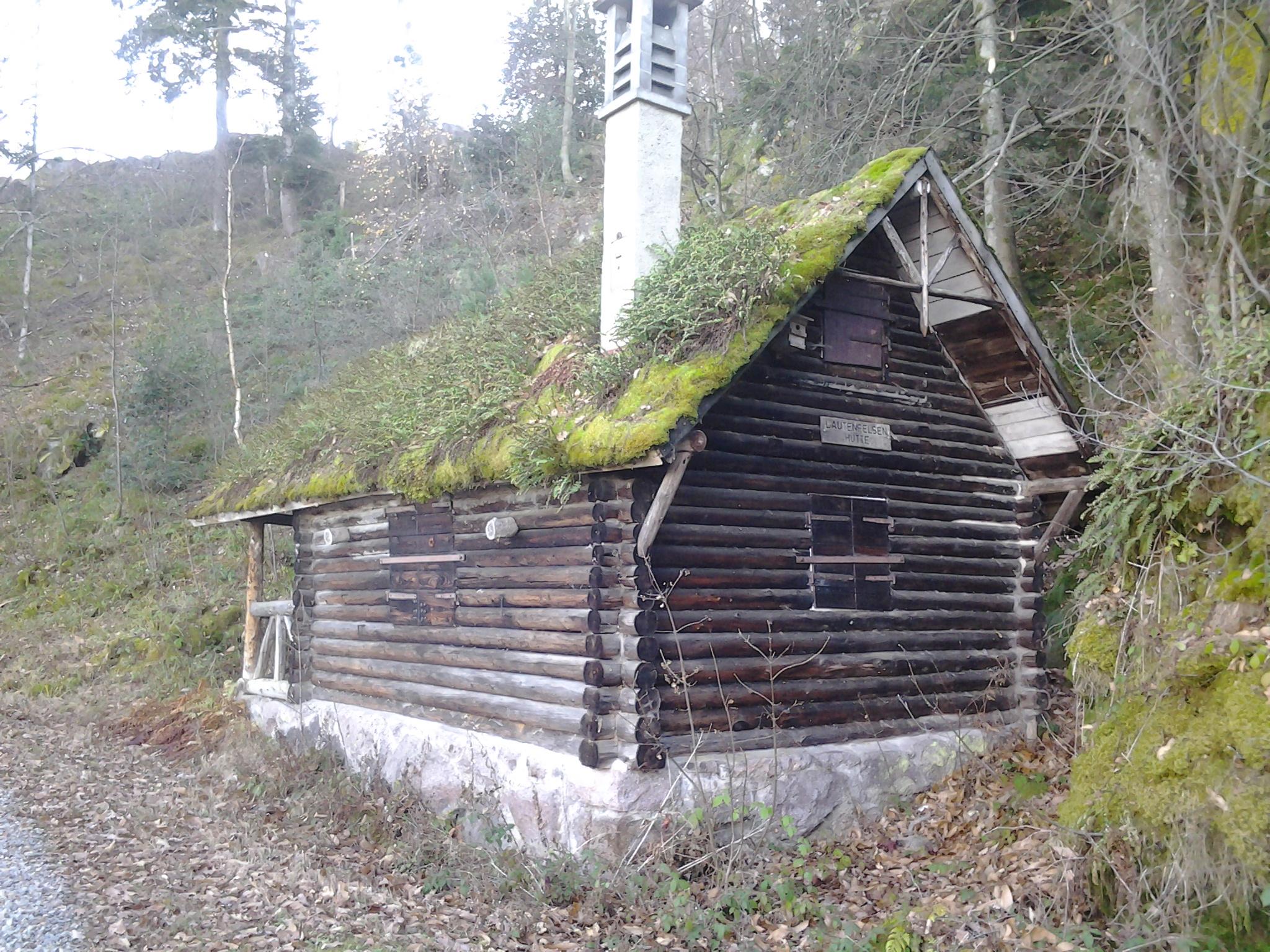 Begrünte Waldhütte im Schwarzwald