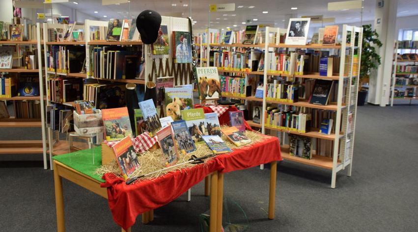 Ein breites Angebot wartet in der Stadtbücherei auf die jungen Leser und Leserinnen