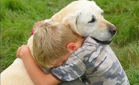 morsures enfant prevention chien