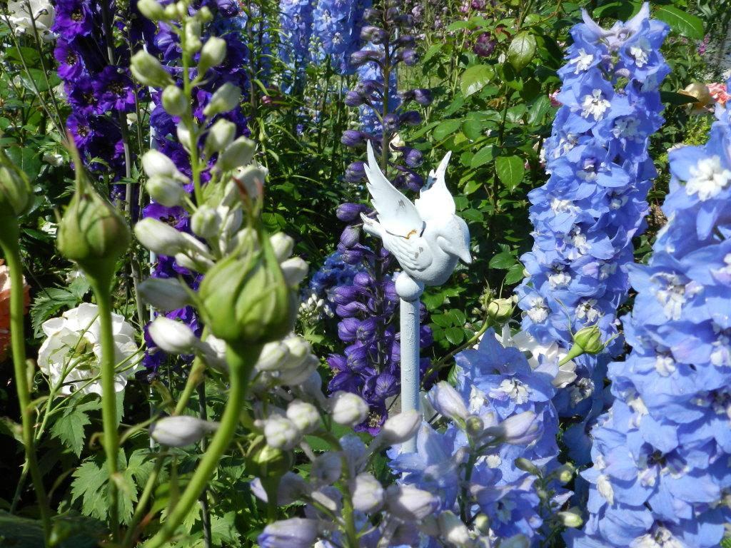 Begeisterung Garten