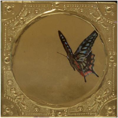 蝶 12cm x 12cm