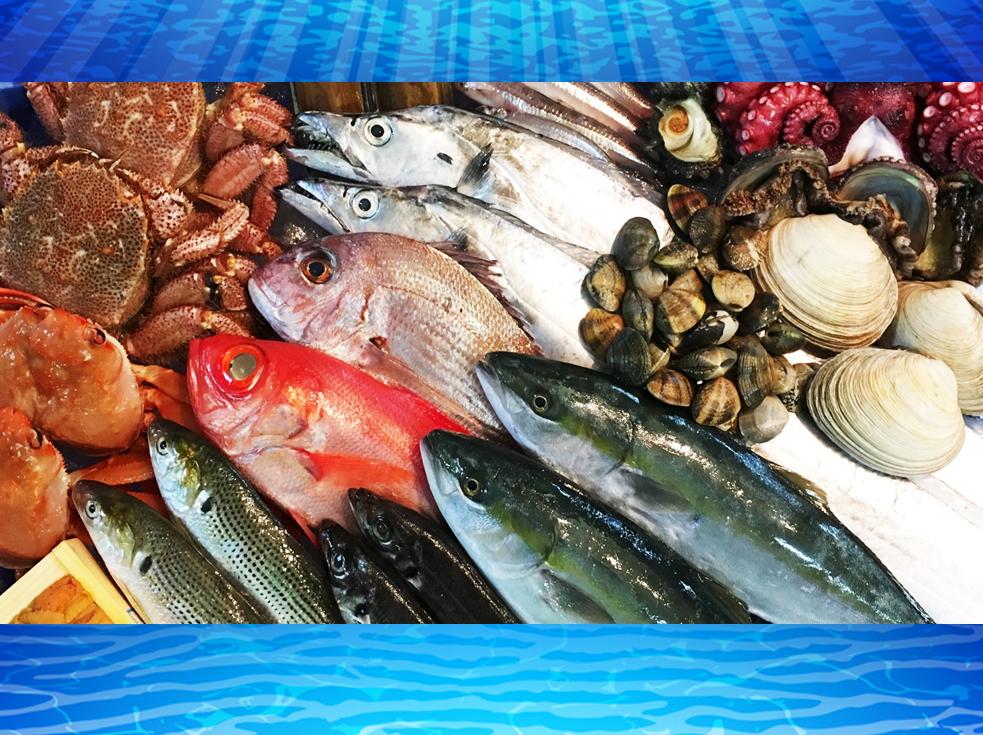 常時、たくさんの魚と出会えまっせ!!