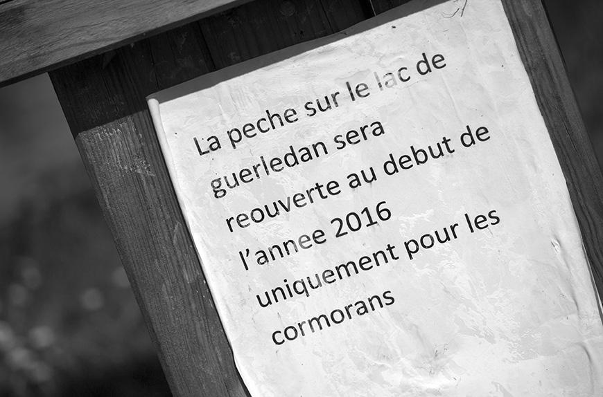 Les Revenants s01e01