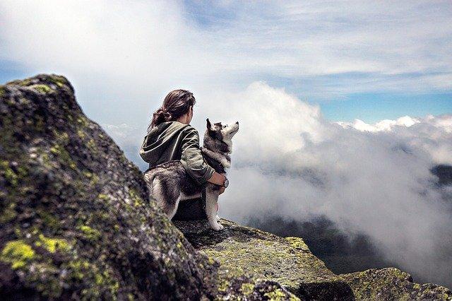 Mit Hund das Drehbuch des eigenen Lebens verändern