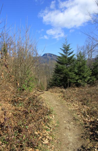 au loin le mont Beauvoir