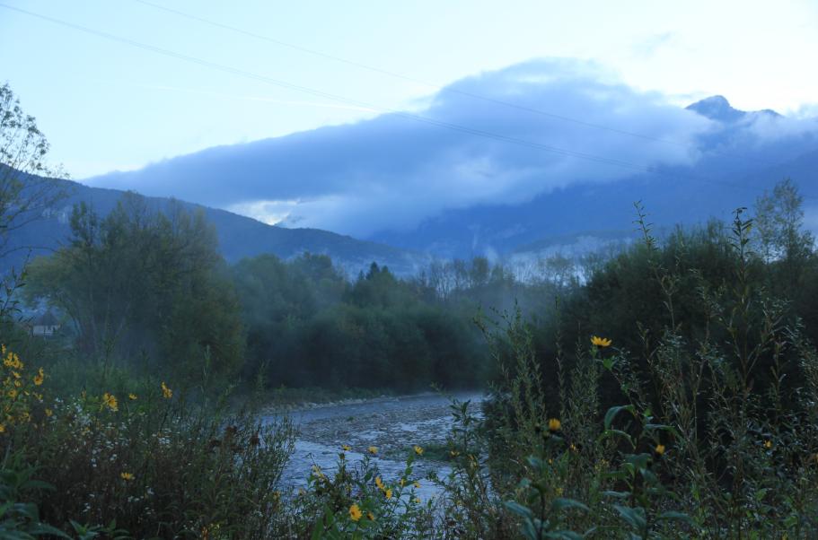 la Chartreuse dans la brume