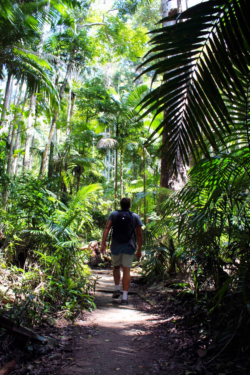 Mount Warning, Australia- October 2015
