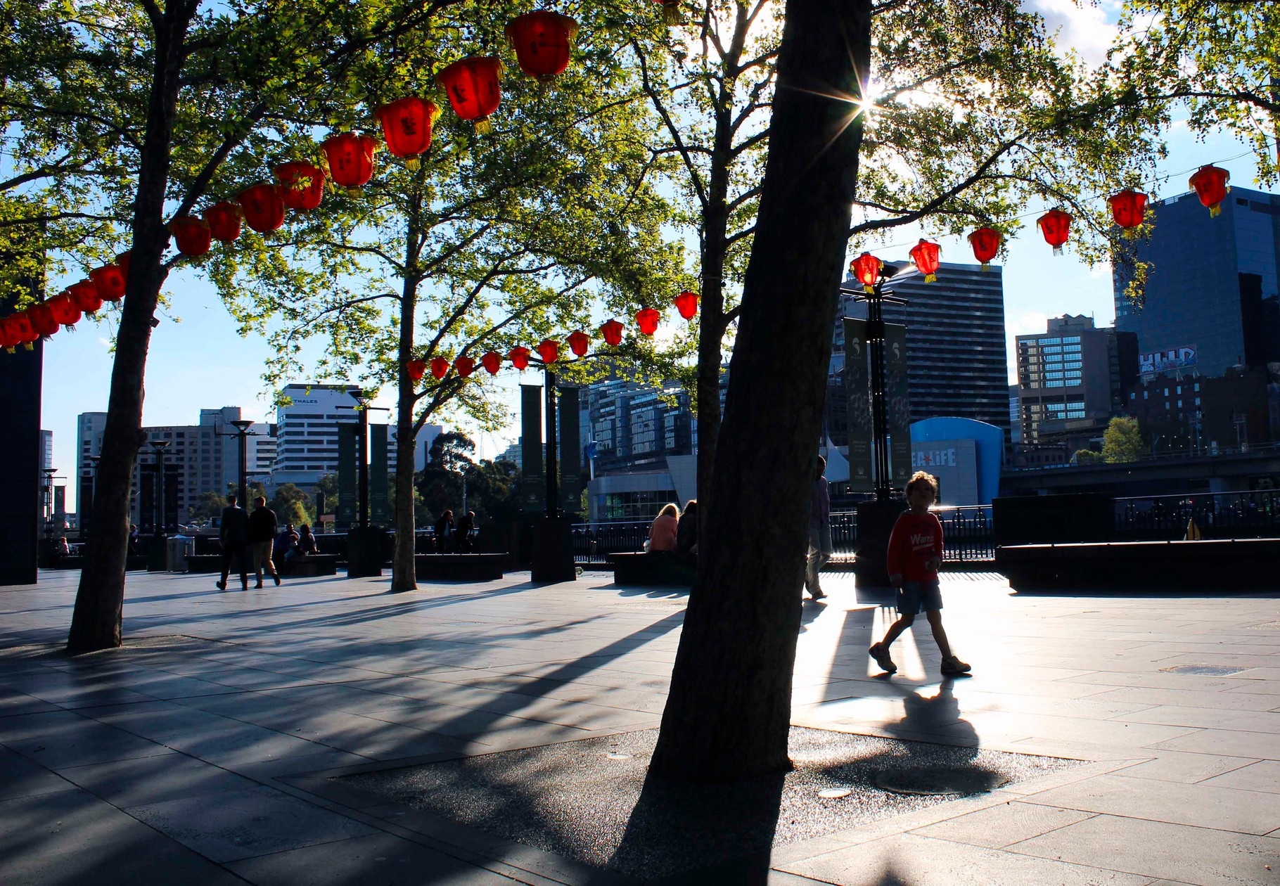 Chinese food festival- Melbourne- October 2015