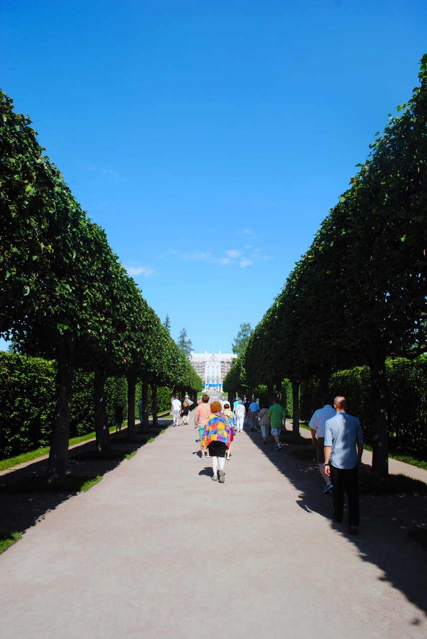 Catherine Palace- St Petersburg July 2014