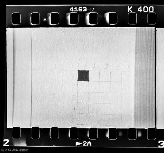 Digitalisat des ersten Negativfotos
