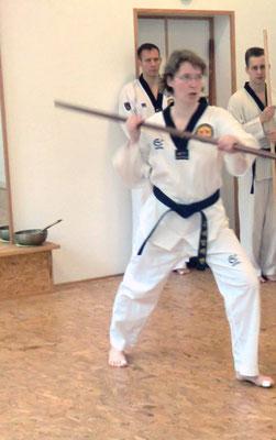 Taekwondo Stockform