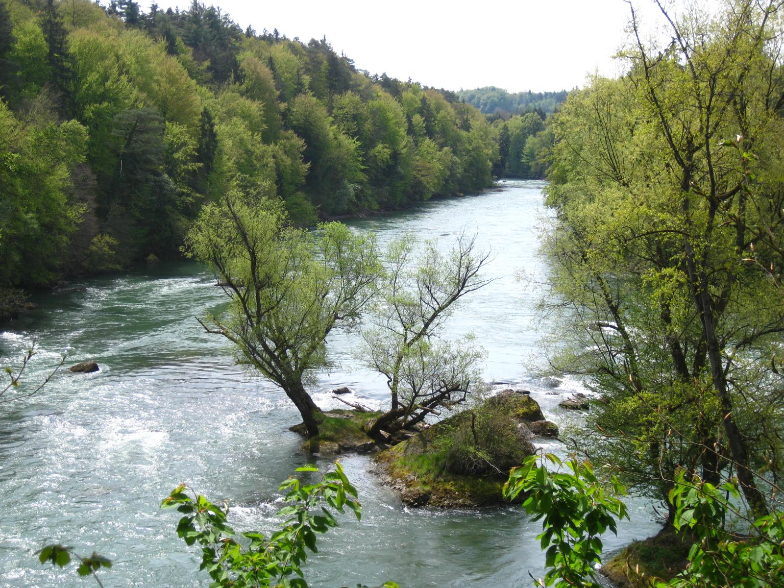 Abschnitt beim Gnadenthal mit den Flussinseln