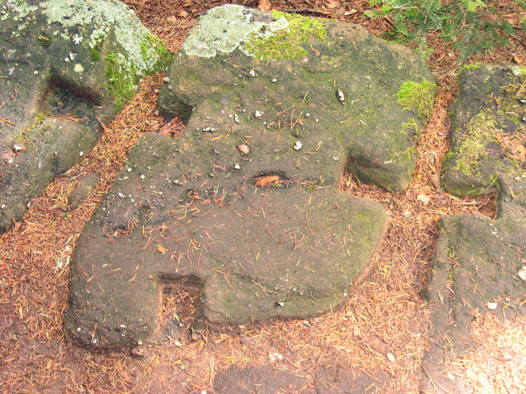 Détail pierre du mur Païen-Mont Sainte Odile (Bas-Rhin)