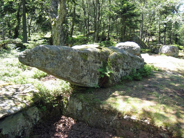 Rocher du Taenschel (Haut-Rhin)