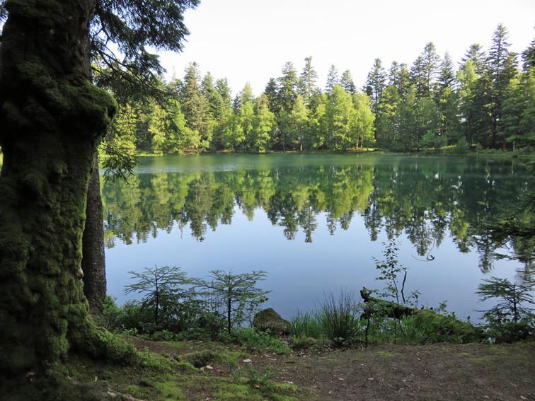 Lac de la Maix (Vosges)