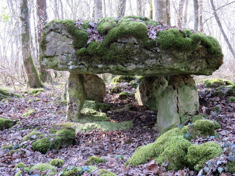 Dolmen de Rochefort sur la côte (Haute-Marne)