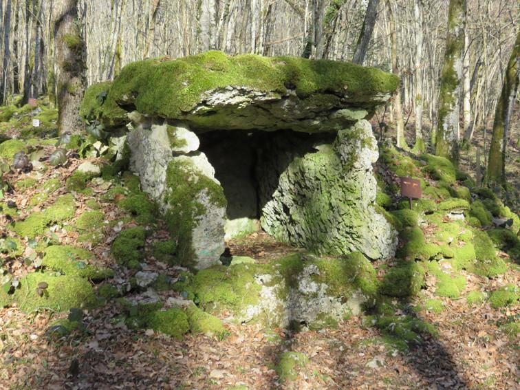 Dolmen du Fort Bévaux ( Haute-Marne)