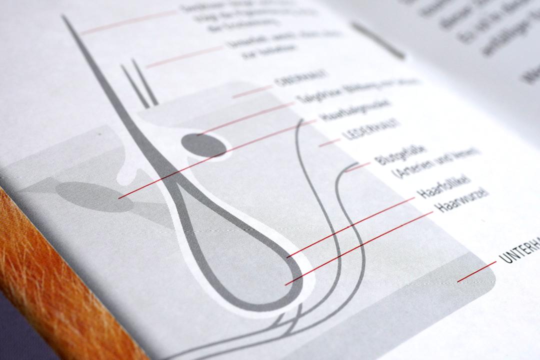 Broschüren für Hunde- und Katzen-Pflegeprodukte, Detail