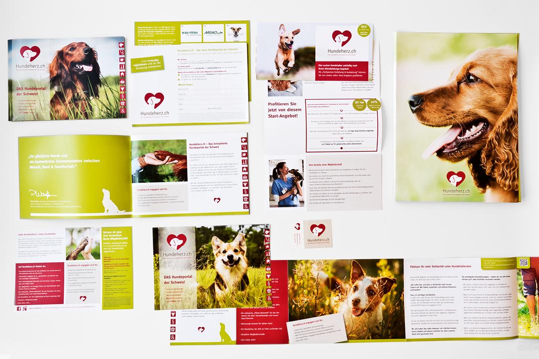 Corporate Design mit Logo und Geschäftsausstattung für eine Hunde-Forum // Gesamtübersicht