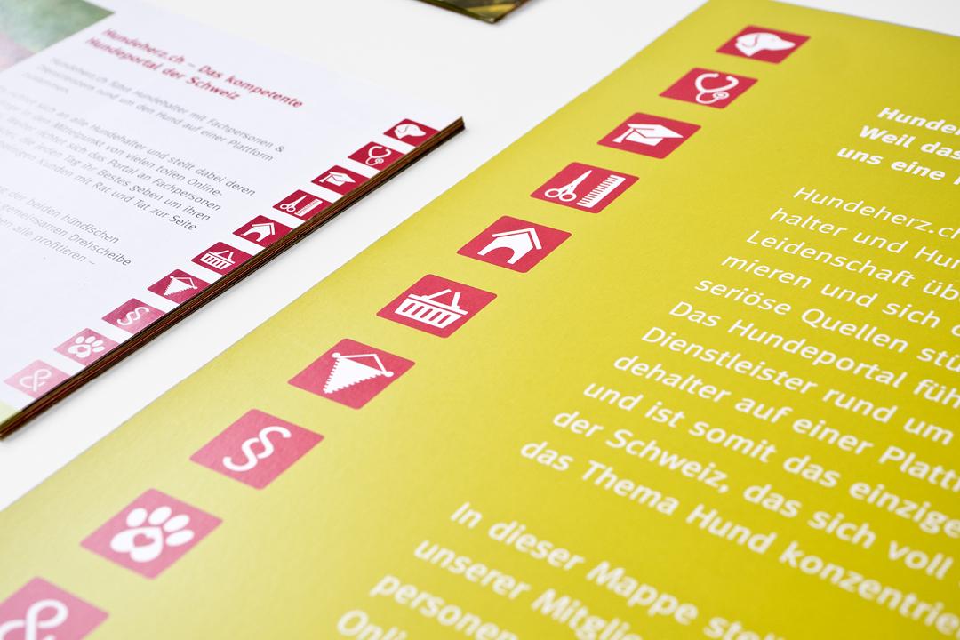Corporate Design mit Logo und Geschäftsausstattung für eine Hunde-Forum // Icons