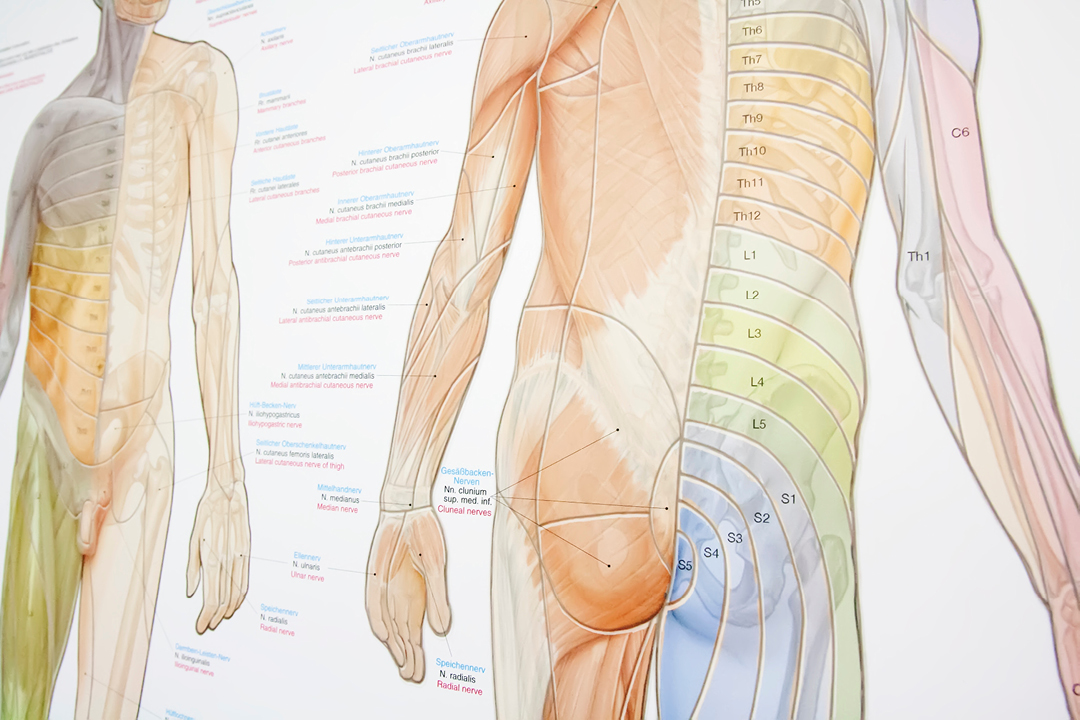 Fotos einer Praxis (Arzt / Physiotherapie) // Detail