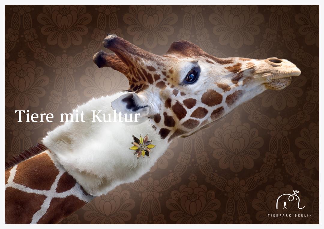 Corporate Design mit Logo, Geschäftsausstattung und Plakaten für einen Zoo // Plakat 7