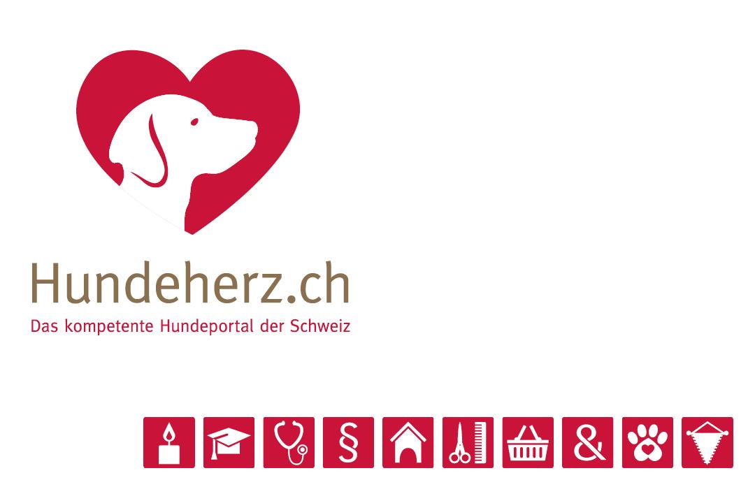Corporate Design mit Logo und Geschäftsausstattung für eine Hunde-Forum // Logo und Icons