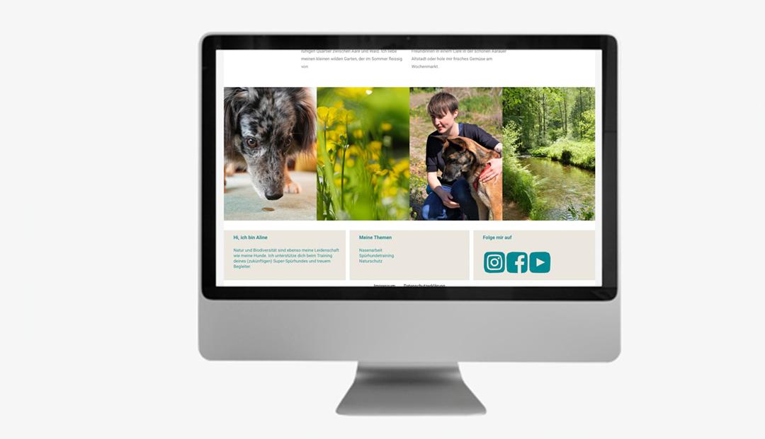 Lernen mit Hund // Website